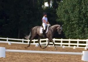 blue-ridge-farm-dressage-monroe