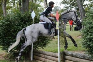 Cleveland Eventing Horse Sales