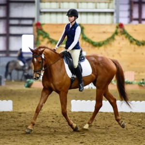 Clifford Dressage