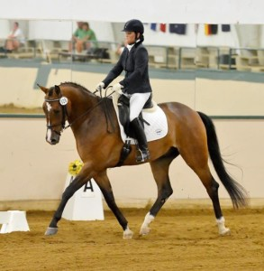 Holly Dressage 2