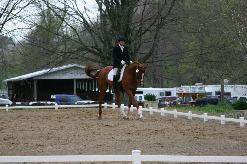 Julie dressage