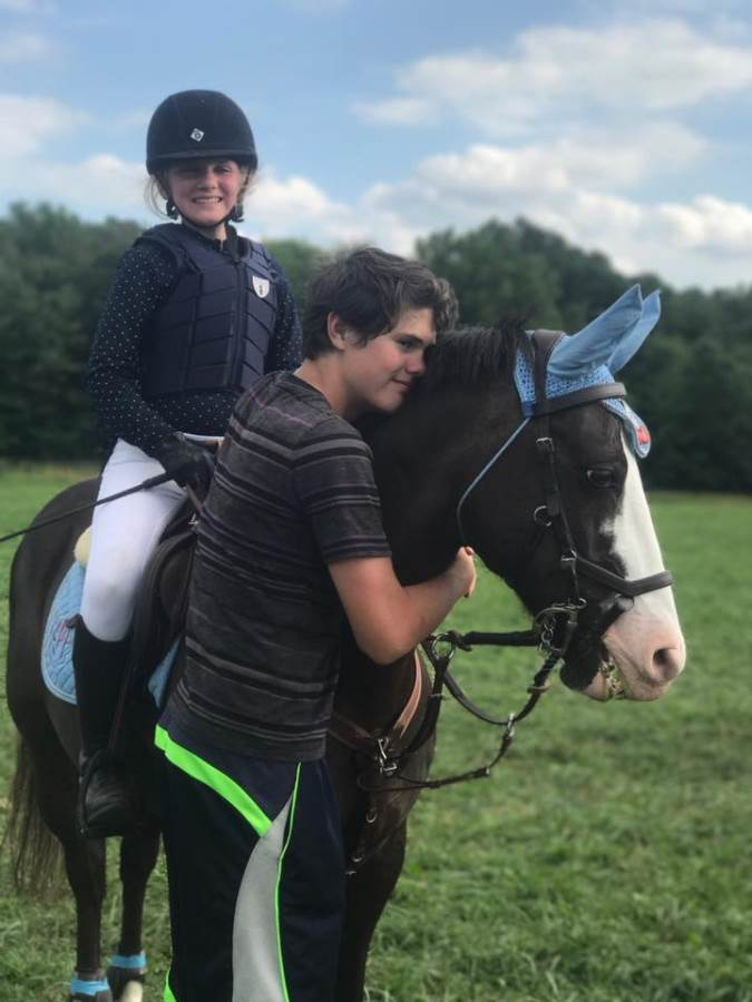 Blue Ridge Farm Specializing In Eventing Dressage And